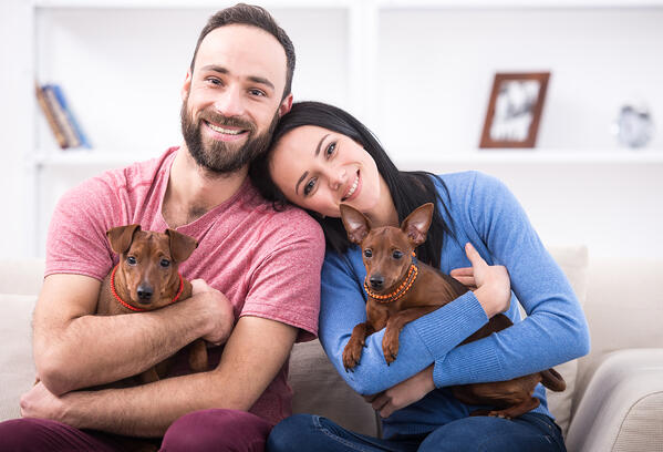 couple holding dogs